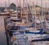 jachthaven wellekom watersport